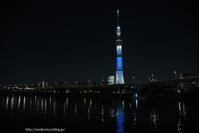 夜景 - Noriko's Photo  -light & shadow-