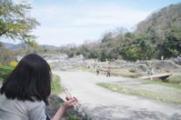 4/16、長瀞の桜~岩畳・野土山・宝登山神社 - 某の雑記帳