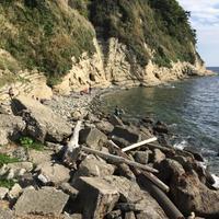 鎌倉付近の穴場 - Brezza Marina