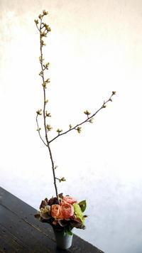 北32条の梅酒BARの10周年に。「背を高く、春っぽい感じ」。2017/04/21。 - 札幌 花屋 meLL flowers