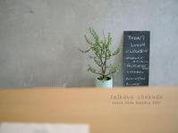 ゼルコバ食堂   大阪・三国ヶ丘 - Favorite place  - cafe hopping -