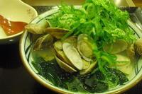 丸亀製麺 『春のあさりうどん』 - My favorite things