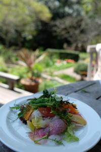 石窯ガーデンテラスで、お花見ランチ - カマクラ ときどき イタリア
