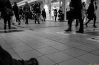 札幌地下街・地下歩道空間 - I shall be released