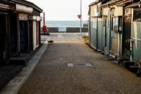魚港の町 - 日々是好日 Here comes the sun.