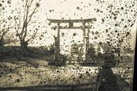 石井神社のガラス窓 - 日々是好日 Here comes the sun.