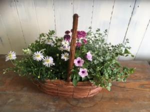 4月寄せ植え教室レポ☆月曜日 - N-fleur*