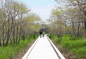 新しくなった恩根内ビジターセンター 4月24日 - 釧路からのご当地情報!