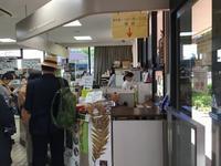 武蔵小山から白金台まで歩く(2)自然教育園と八芳園 - 散歩ガイド