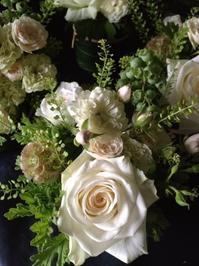 5月のFlower Lesson @SENDAI KOFFEE CO. - la petite couronne de fleur