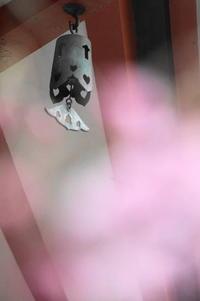 """桜を無理矢理 """" 前ボケ """" に用いるの巻 - 日本写真かるた協会~写真が好きなオッサンのブログ~"""