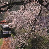 口羽駅 - ゆる鉄旅情