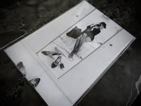 "Pattie Boyd写真展 『George, Eric & Me -パティが見たあの頃- 』 - 飽商909の""ナローな""時計部屋"
