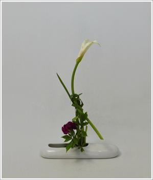 花材を傷める - tamins の花と空と月と☆
