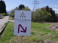 未来のワイナリーVin de la bocchiで植樹のお手伝い - 松下ルミコと見る景色