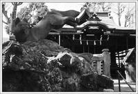 千住散歩 -605 - Camellia-shige Gallery 2