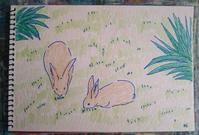 Day6 ロクルム島へ その1 - たなかきょおこ-旅する絵描きの絵日記/Kyoko Tanaka Illustrated Diary