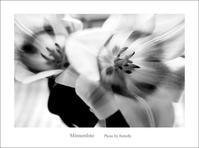 本性 - Minnenfoto