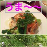 鹿児島でおいしい食事! - 妄想旅