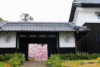 石上神宮から奈良へ - 暮らしを紡ぐ
