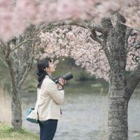 写真展のお知らせ - ecocoro日和