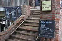 Slow Garden - マッシュとポテトの東京のんびり日記