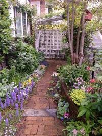 庭の様子と旅行準備  - 美鈴とトラと私とお庭