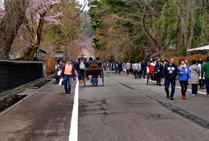 秋田県仙北市角館「武家屋敷」の桜 - フォトハウス in 福島