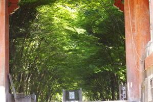 期待していなっかった醍醐寺に感激!!その1 - 自分らしく、ありのままで(^^♪