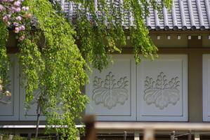 世界遺産、醍醐寺に感激!!!その2 - 自分らしく、ありのままで(^^♪