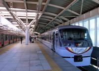 照姫まつりで賑わう石神井公園 - 黄色い電車に乗せて…
