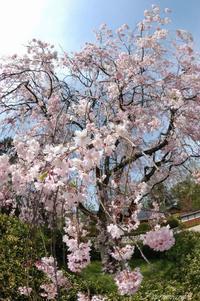 松川公園Vol.3 - 今日の空+α2