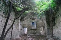屋根崩れツタ満つ教会・蘭・マロニエ、イタリア月面登山1 - ペルージャ イタリア語・日本語教師 なおこのブログ - Fotoblog da Perugia