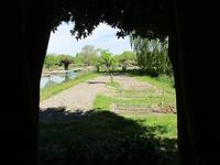 月桂樹から見た畑の風景 - フランス Bons vivants idees d'aujourd'hui