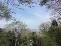 足羽山デッキ - 日だまりカフェ