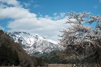八海山 - くろちゃんの写真