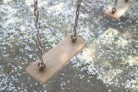 桜ブランコの公園 - ちょこちょこ4
