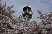信州安曇野~春の道祖神 - Tomの一人旅~気のむくまま、足のむくまま~