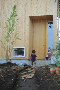 庭4年目。庭づくりをふりかえる③アプローチ - ササキサキコdiary 家の話、本の話