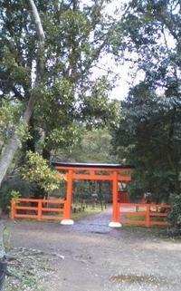 植物園の中に:半木神社(なからぎじんじゃ) - お休みの日は~お散歩行こう
