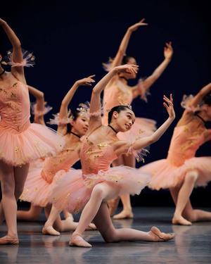 果てなき探究心     @ 溜めレッスンは効かない  - 『 Etoile de Ballet ☆ バレエの星 』