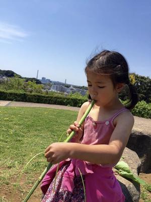 本日はのんびりと - 横浜市:森の幼稚園&小学生アウトドアスクール かいじゅうの森船長日記