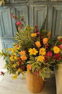 沖縄料理店開店祝いの花 - 北赤羽花屋ソレイユの日々の花