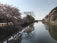 関西旅1日目 - 漁師の女房
