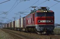 EF510貨物 丸岡ストレート - レイルウェイの毎日