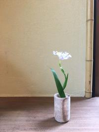 しゃが - g's style day by day ー京都嵐山から、季節を楽しむ日々をお届けしますー