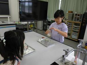 空気の組成 - 大島町立つつじ小学校