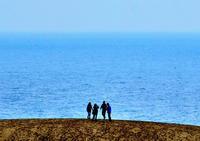 冬の鳥取砂丘 - 写真の散歩道