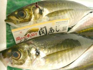 SEKIAZI★ - TOYOTA旬菜旬肴 きらり 公式スタッフブログ