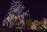 東寺ライトアップ - 鏡花水月